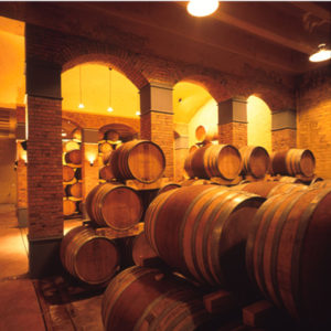 Cape Wine Cellar Tours